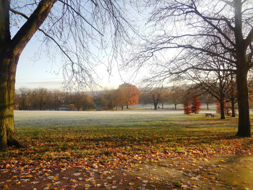 Frosty Spinneyhill Park Leicester (37) 001