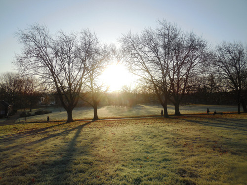 Frosty Spinneyhill Park Leicester (12) 001