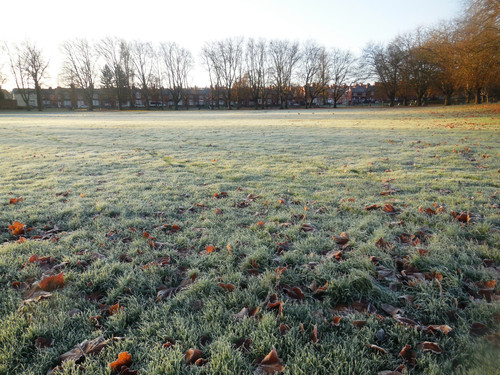 Frosty Spinneyhill Park Leicester (20)