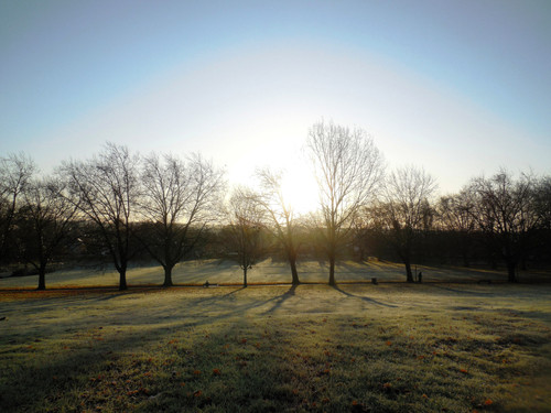 Frosty Spinneyhill Park Leicester (10) 001