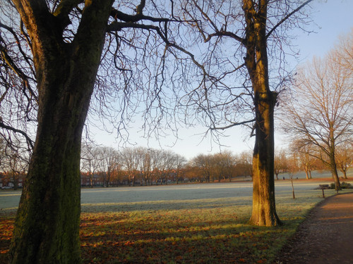 Frosty Spinneyhill Park Leicester (27)