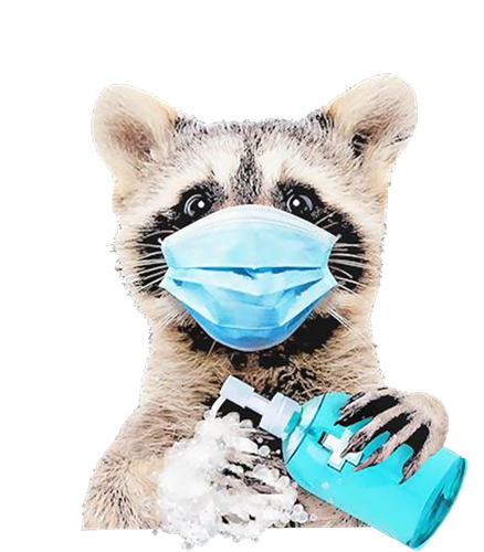 Racoon Ew People Wearing Mask Washing Hand Health Protection Funny 224357476955!!!.png