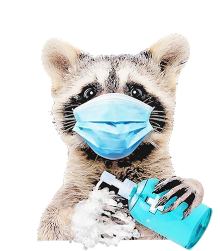 Racoon Ew People Wearing Mask Washing Hand Health Protection Funny 224357476955.png