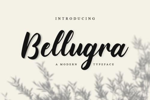 Bellugra Font.jpg
