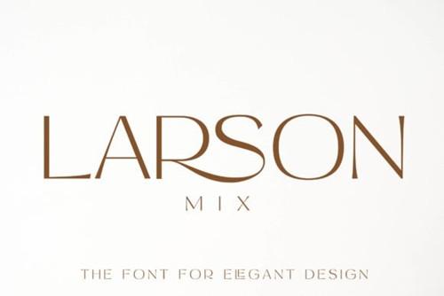 Larson Mix Font 1x TTF/OTF