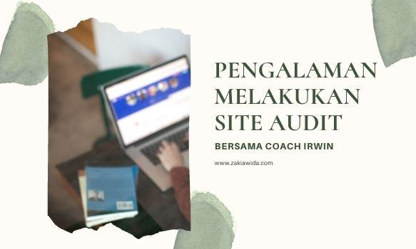 melakukan site audit