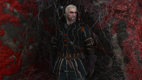 the witcher 3 wild hunt 30874329007 o.png