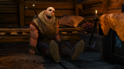 the witcher 3 wild hunt 30874333067 o.png