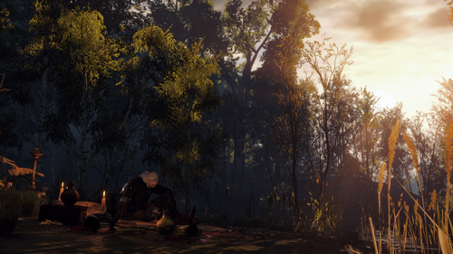 the witcher 3 wild hunt 30874333847 o.png