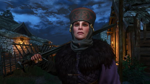 the witcher 3 wild hunt 31943369518 o.png