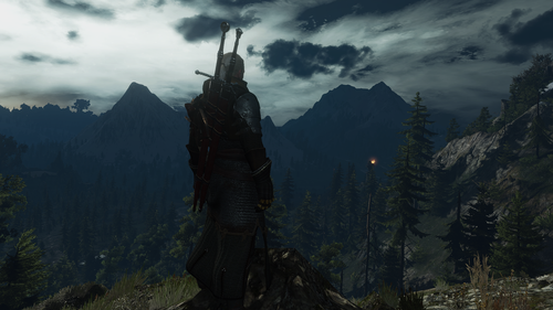 the witcher 3 wild hunt 44901282865 o.png