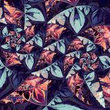 Dahlia Dimension by teundenouden EZ