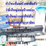 IMG 0021883 2029