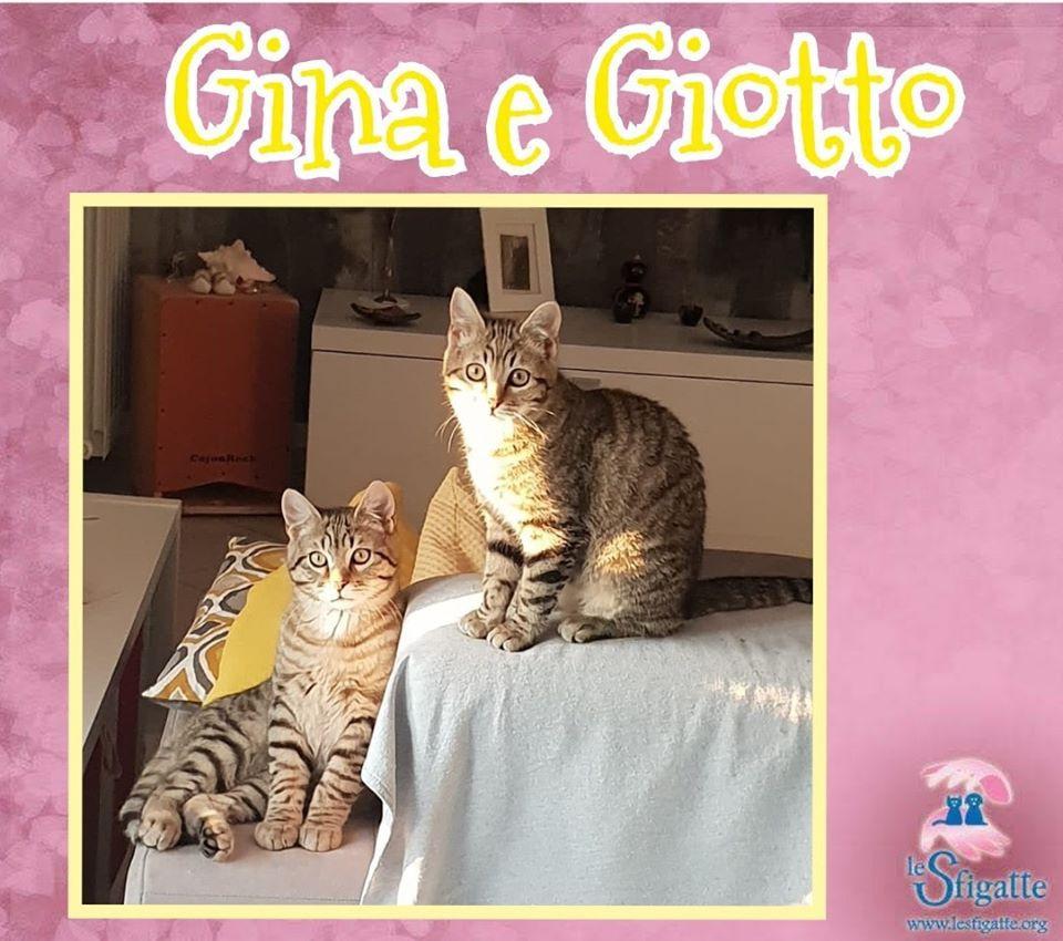 Foto di Gina e Giotto