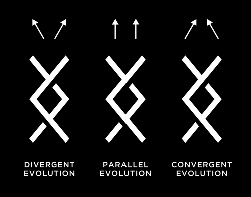 DRC Evolution Patterns.png