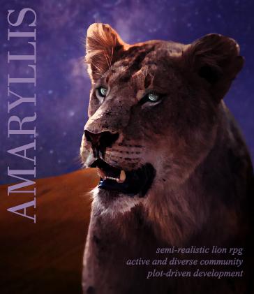 amaryllis — a semi-realistic lion rpg QHpjHP